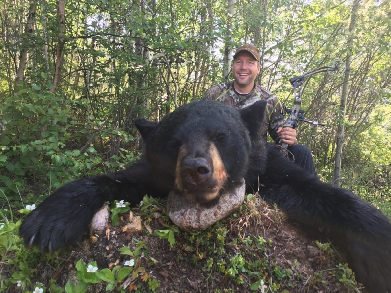 Bear huniing with Bear Down Outfitters