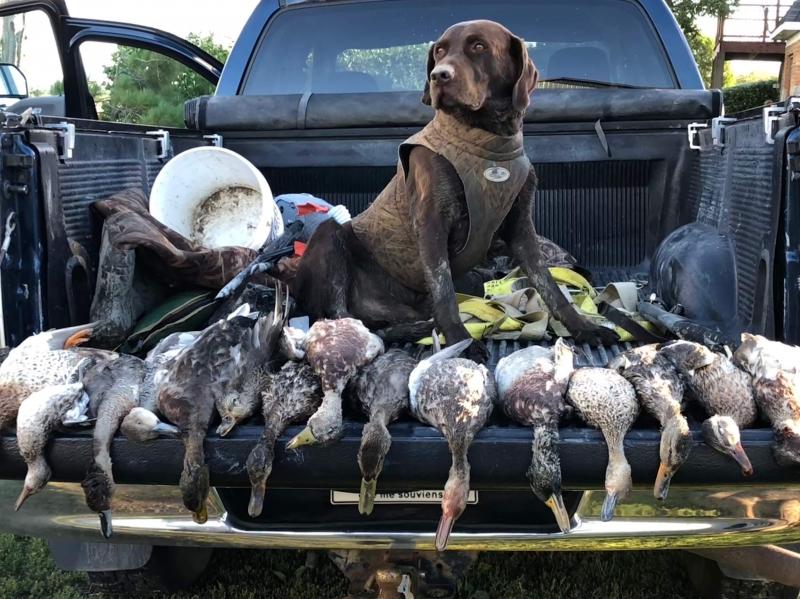 0e4f9a0bf8cae Duck Hunting for Ducks | Saskatchewan Duck Hunting