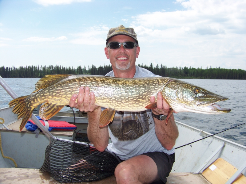 Big Saskatchewan Pike