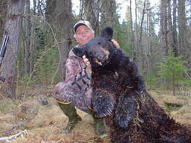 Saskatchewan Black Bear