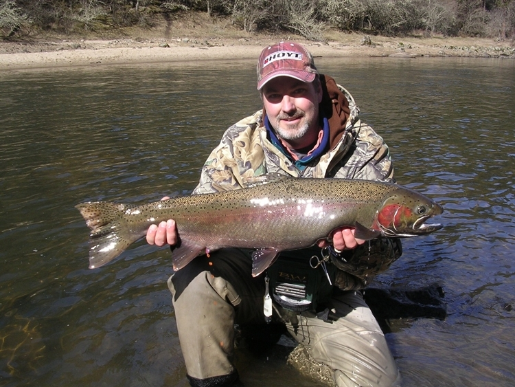 Steelhead by Tim