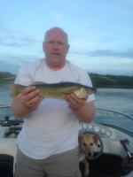 2nd Best Walleye