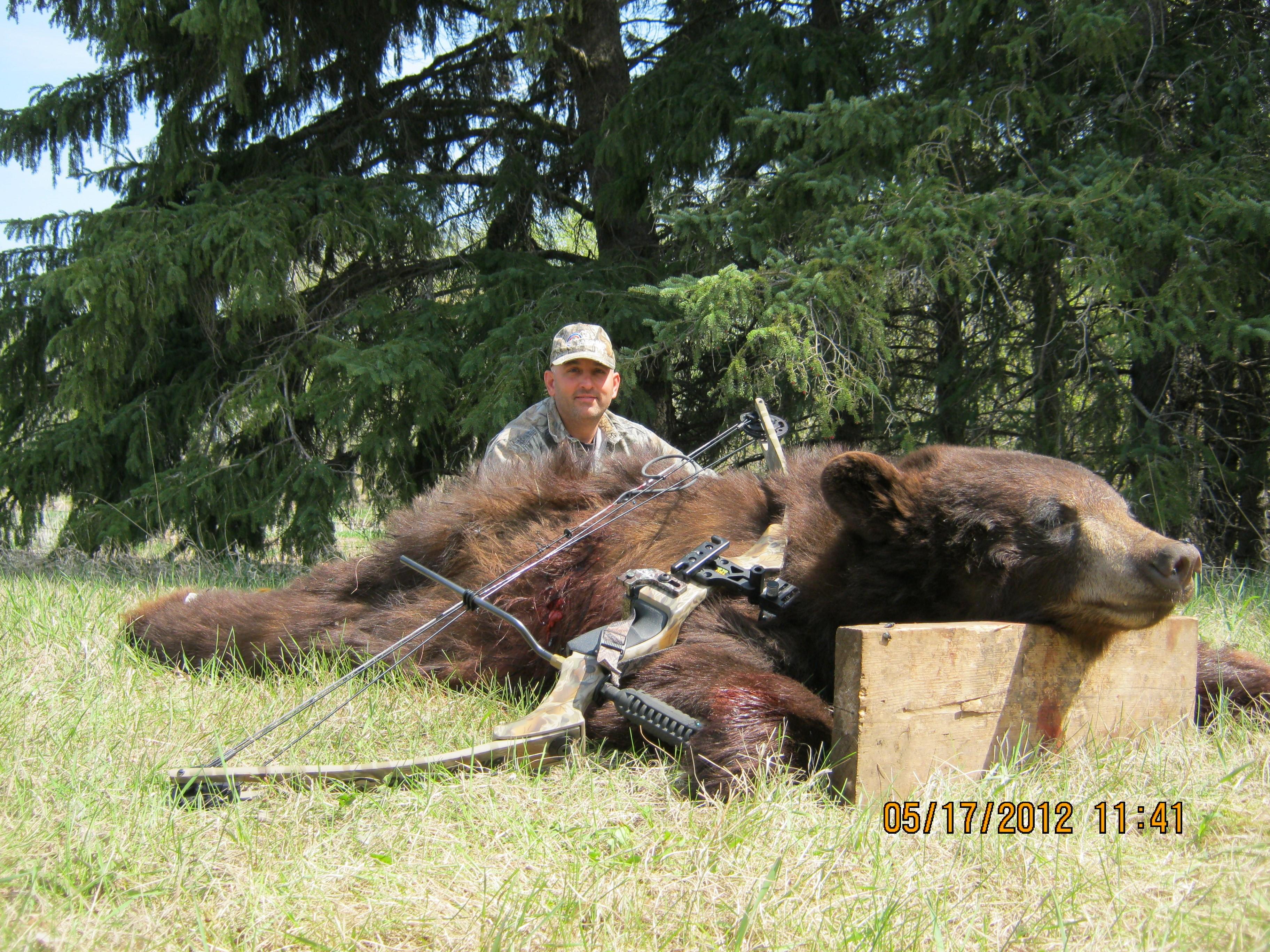 manitoba black bear hunting guides