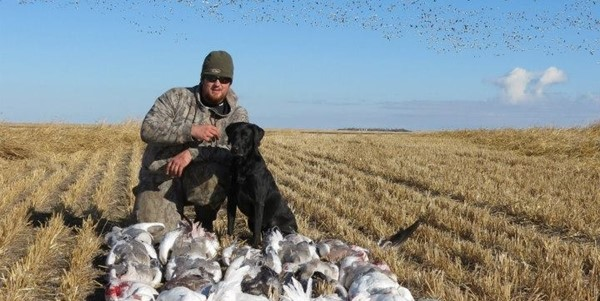 Goose-hunting-538