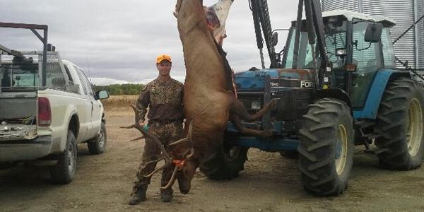 Elk-hunting-514