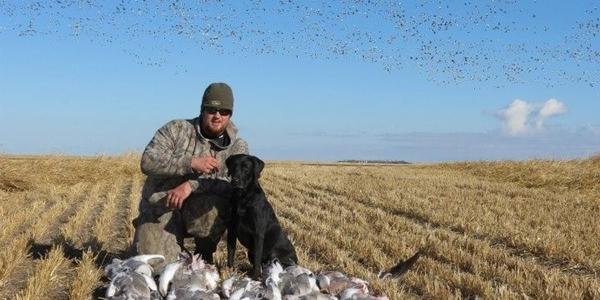 Goose-hunting-538